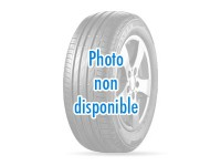 EVERGREEN EH23 235/60R16 en Guadeloupe